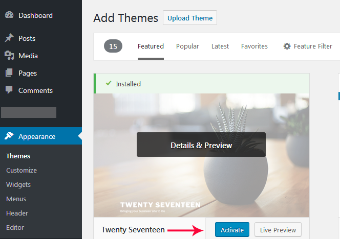 install WordPress theme Active